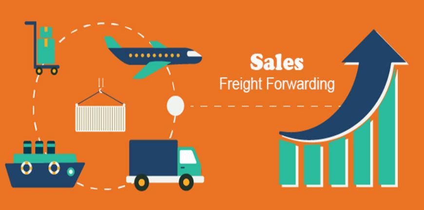 Có những loại sale logistics nào